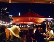 Midtown Girl by Amy Chandra Browne - Roof at Park South Review (1)